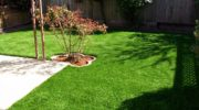 Reasons to choose artificial grass over a live lawn